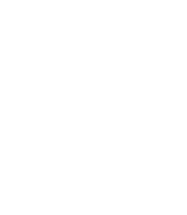 Safe, efficient, low-cost consumer service.